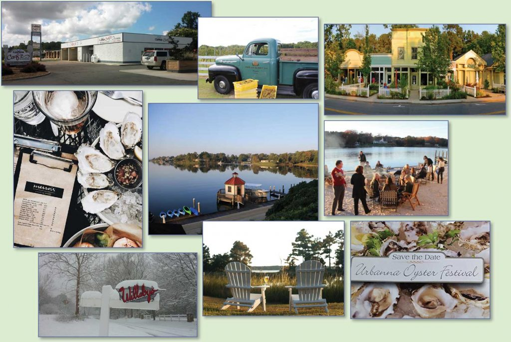 Collage of area places to visit