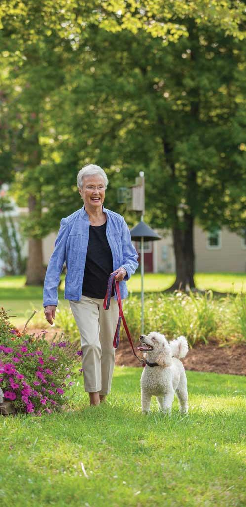 community-life-woman-walking-dog