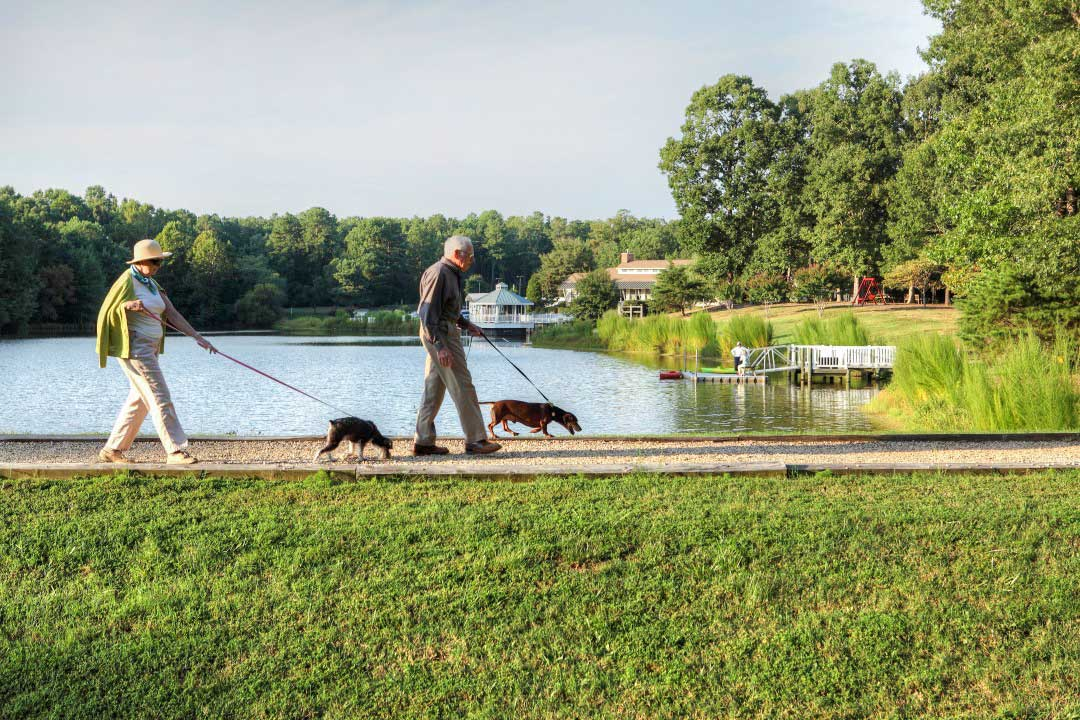couple-walking-dogs-lakefront