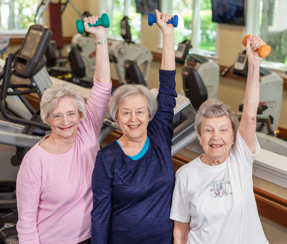 Three ladies exercise by lifting weights with dumbbells