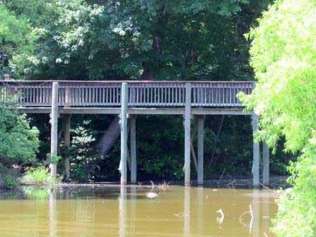 walking-bridge-lake